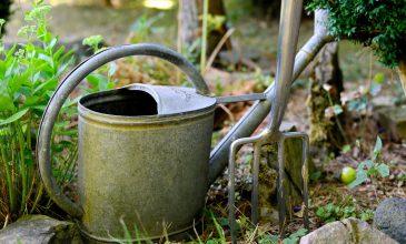 Aan de slag met je eigen erf of tuin